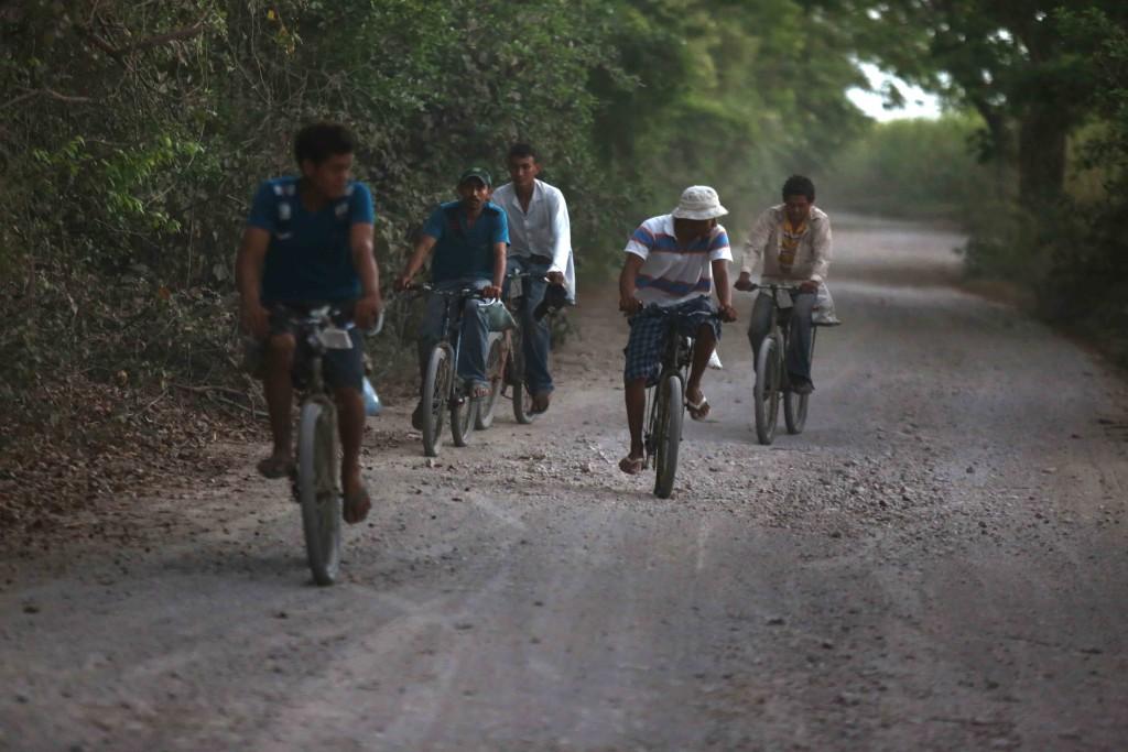 Canecheros rumbo al manglar