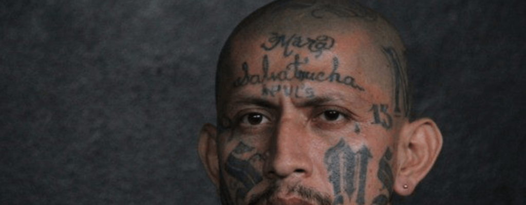 The-Origins-Of-The-MS13-Mara-Salvatrucha-Name535