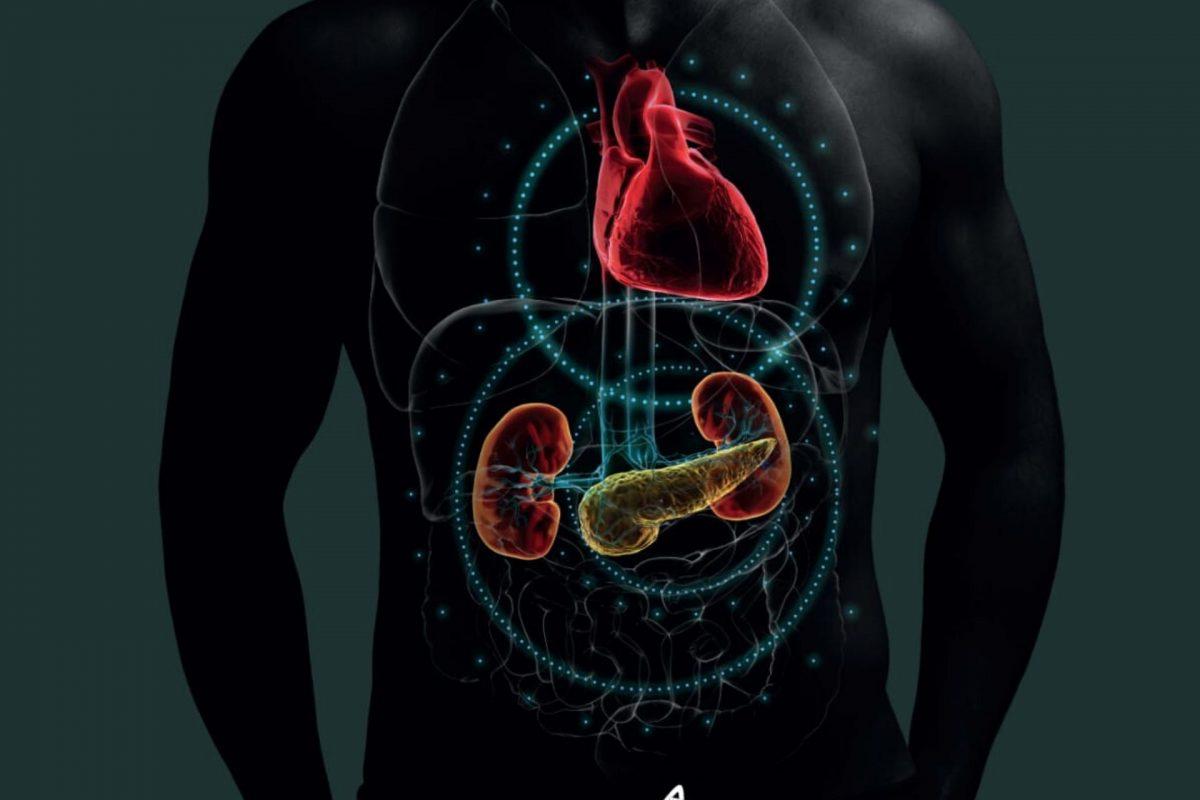 Especialistas impulsan el abordaje integral de las enfermedades cardio-renal-metabólicas