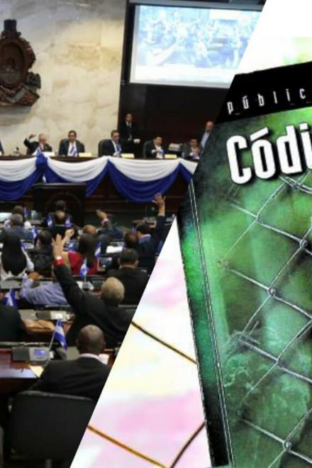 """""""Derogación de artículos del nuevo Código Penal es una artimaña ilegal"""": Jari Dixon"""