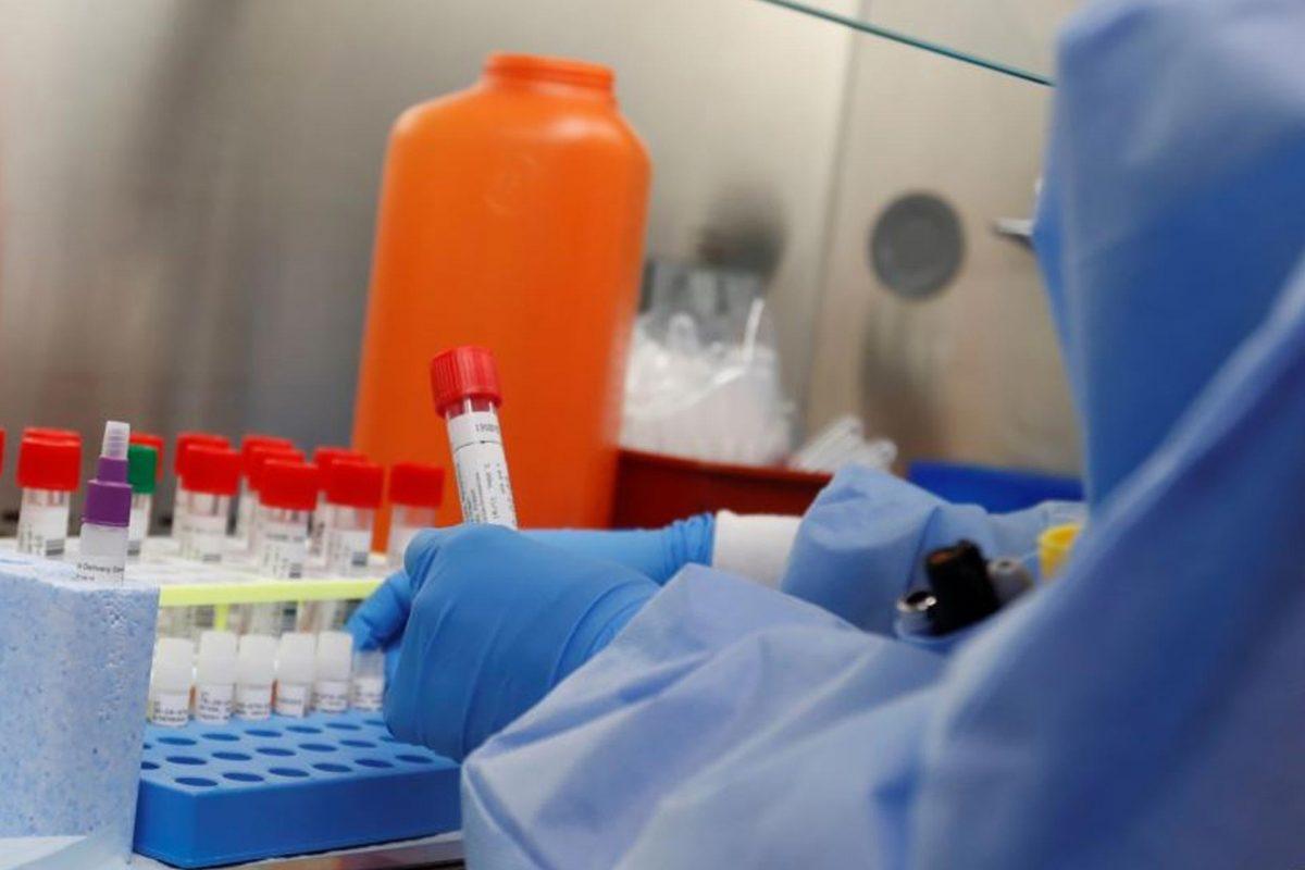 Cuando el coronavirus ataca, las células humanas se convierten en fábricas de virus
