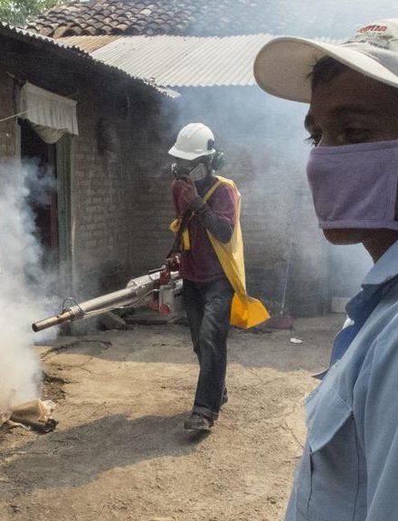 Casos de dengue, zika y Chikungunya se han reducido este año