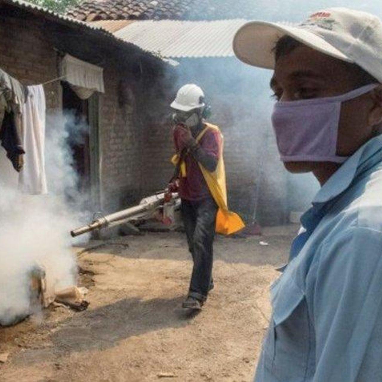 En estado de epidemia cuatro departamentos a causa del dengue