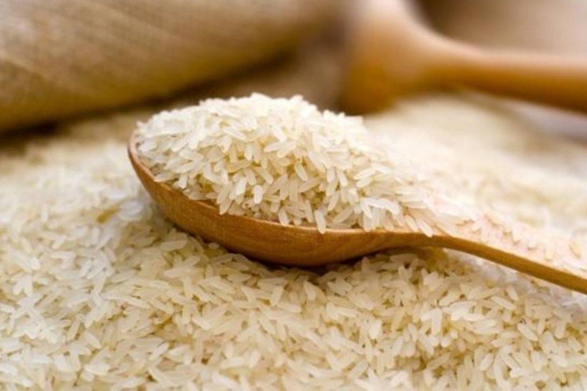 Productores de arroz se irían dProducto del TLC con EE.UU., productores de arroz advierten masiva importación del grano para 2022